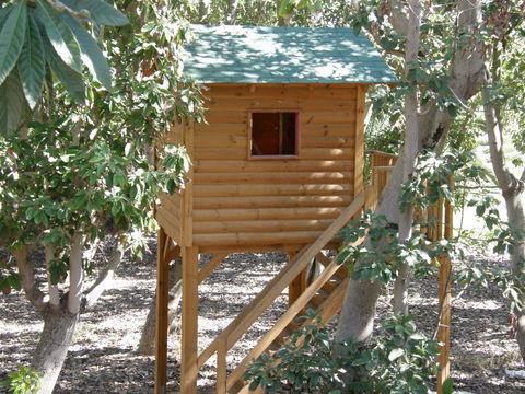 בית עץ לילידם