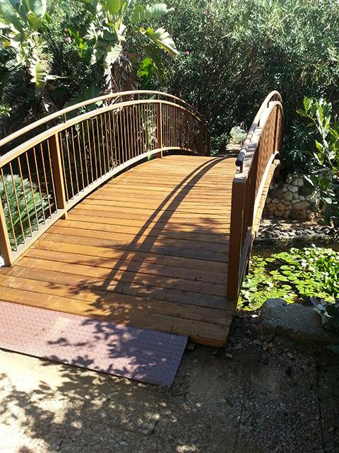 גשר בנוי מעץ באוניברסיטה