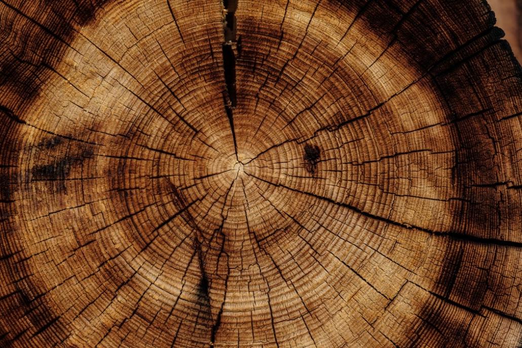 דק מעץ לעומת דק סינטטי
